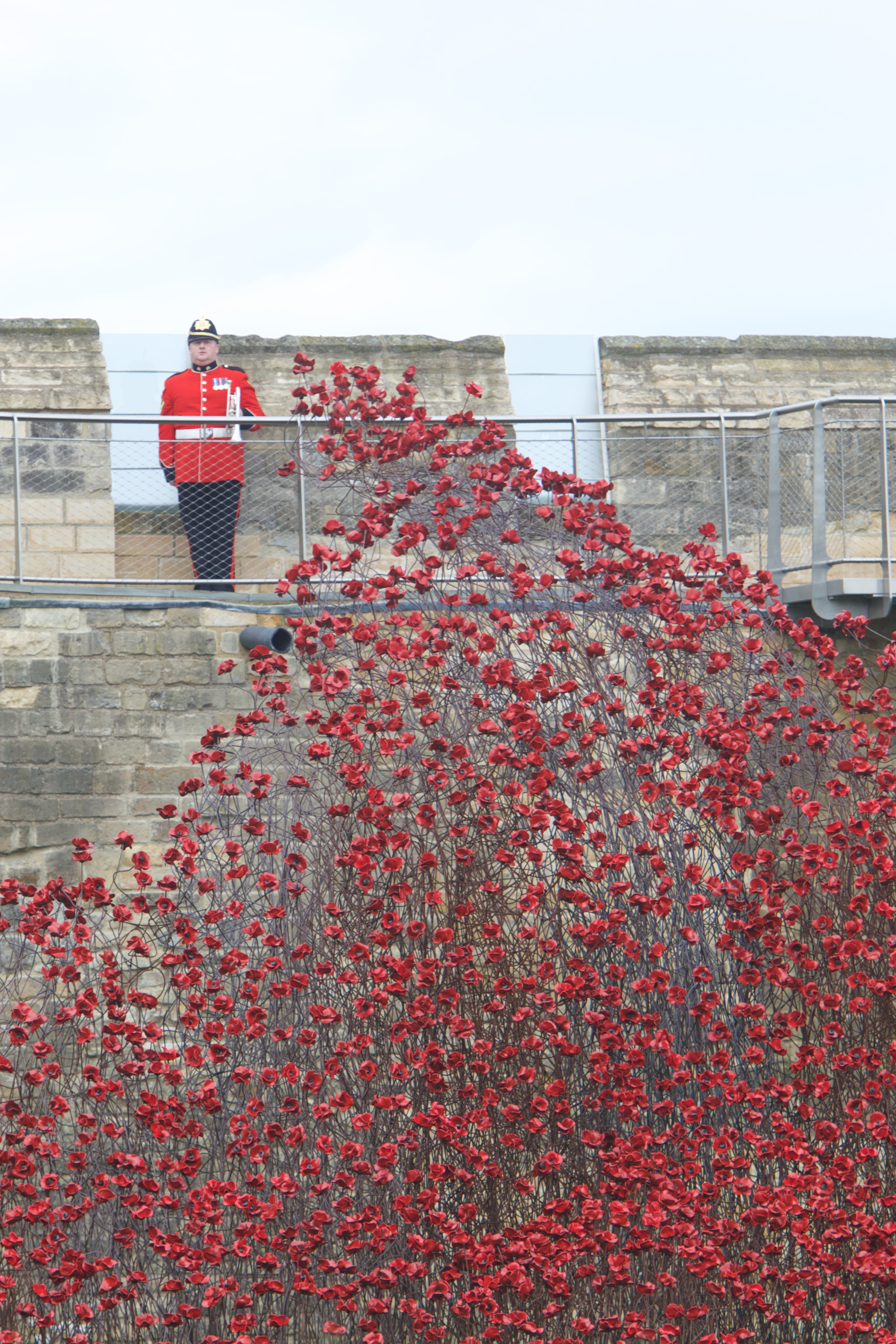 The Last Post by the Poppies at Lincoln Castle